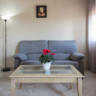 apartamentos_turisticos_la_castilleja_3144